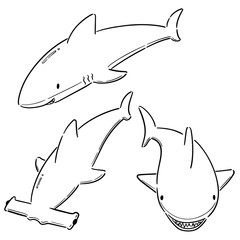 vector set of sharks