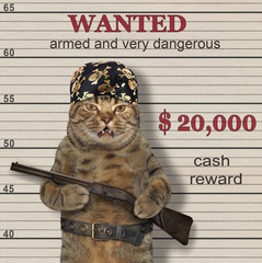 The cat criminal in the pirate bandana holds a rifle. He is wanted.