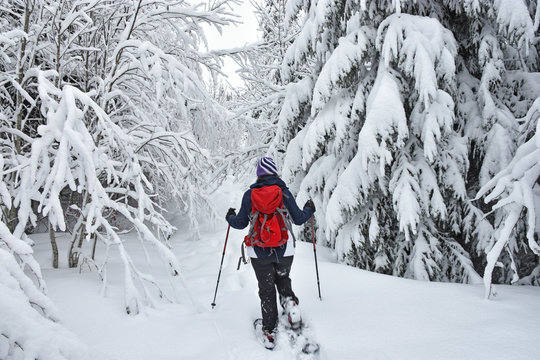 Woman with red backpack snowshoeing in a deep forest. Bavaria, Germany
