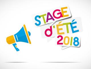 mégaphone : stage d'été 2018