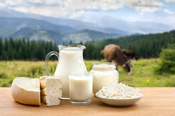 Milk, sour cream, cheese and cottage cheese on wooden table on background of meadow with cows in the mountains.