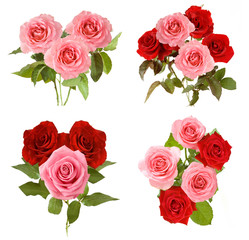 beautiful roses bunch isolated on white background