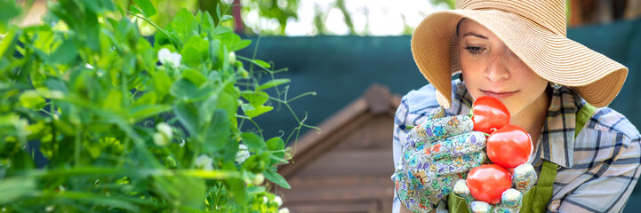 Beautiful young small business farmer smelling freshly harvested tomatoes in her garden. Homegrown bio produce concept. Small business owner. Web banner.