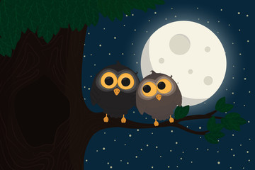 Two cute owls sit at branch under the moon