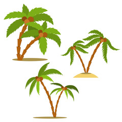 Set of palm illustrations in cartoon style. Design element for poster, card, flyer, banner.