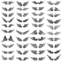 Big set of wings on white background. Design elements for logo, label, emblem, sign.