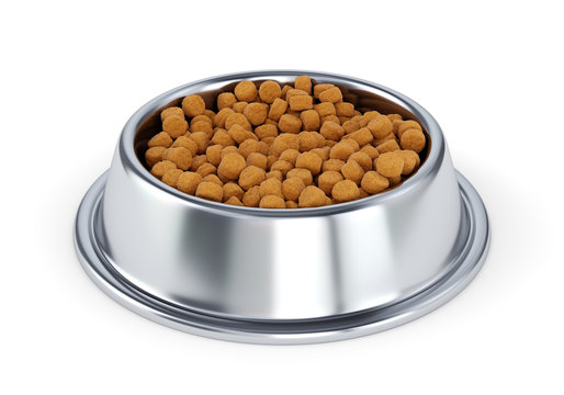 Metal pet bowl with dog food