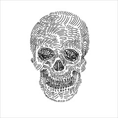 Drawing of skull on white