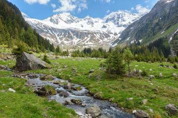 Spoed Fotobehang Pistache alpine Landschaft mit Wildbach und Gletscher im Hintergrund