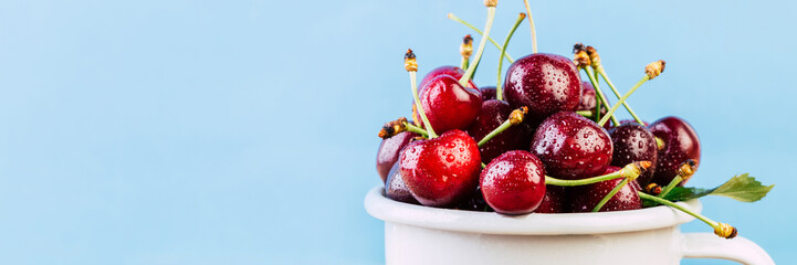 cherry in a white mug on a blue background, banner Wall mural