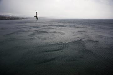Summer Storm at the Sea