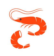 Shrimp set. Isolated shrimp on white background