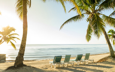 Beach Vacation With Palmtrees And Deckchairs