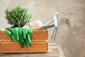 Wooden crate with plant and professional gardening tools on table