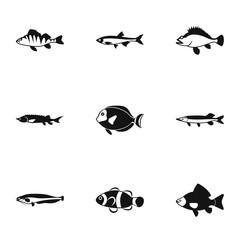 Marine fish icons set. Simple illustration of 9 marine fish vector icons for web
