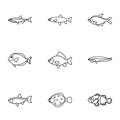 Species of fish icons set. Outline illustration of 9 species of fish vector icons for web