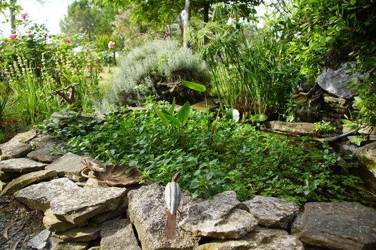Magnifique bassin d'agrément à l'ombre des mûriers platanes