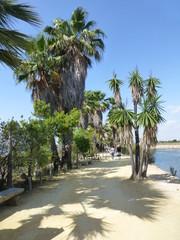 Palos de la Frontera, localidad de Huelva (Andalucia,España) punto de partida de Colon en el descubrimiento de America
