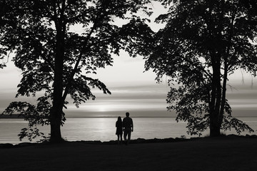 Couple together by the water under the trees.