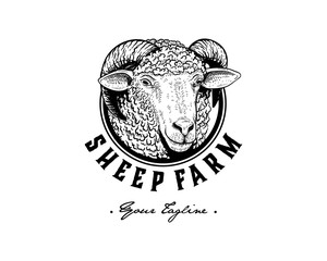 Vintage Logo of Sheep Head Hand drawn Illustration vector circle rounded design