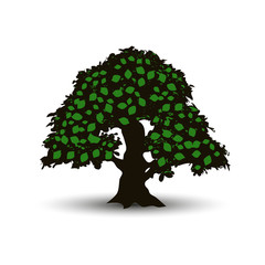 Big tree with green leaves in summer, cartoon on white background,
