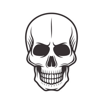 Human skull monochrome style vector illustration