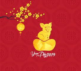 Chinese new year 2019 lantern and blossom. Year of the pig