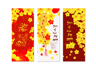 Vertical hand drawn banners set with blossom chinese New Year. Year of the pig