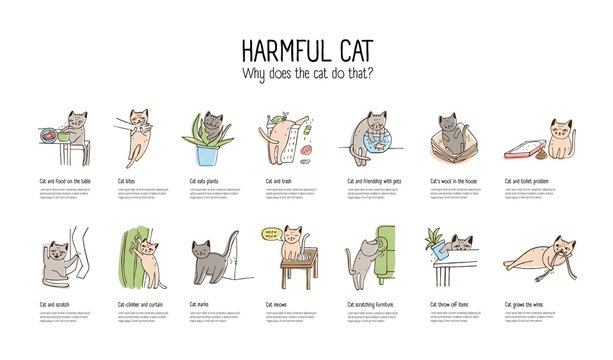 Horizontal banner with naughty cat doing various things - stealing food, scratching furniture, gnawing wires, throwing off items. Bad behavior of domestic animal or pet. Colorful vector illustration.