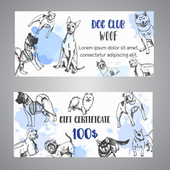 Hand drawn dogs breeds gift certificate. Sketch of dog. French bulldog, dachshund, Husky. Vector illustration