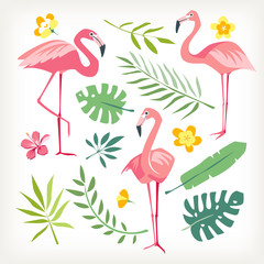Flamingo bird tropicl leaves vector isolated collection white background