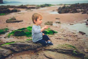 Little boy on beach pointing