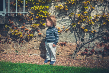 Toddler boy with hair blowing in the wind by wall