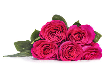 White background with five pink rose flowers bouquet