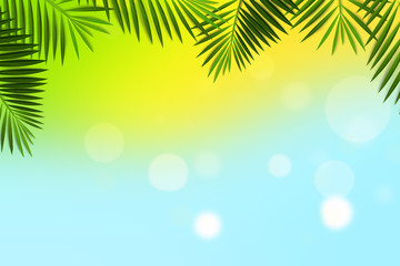 Summer Bokeh Background with Palm Leaves Frame. Can use Sale sign, flyer, poster, shopping, card, website, party, promotion, menu.