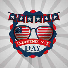 flag in sunglasses with pennant label american independence day vector illustration
