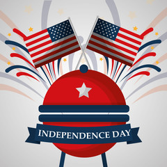 grill flags and fireworks american independence day vector illustration