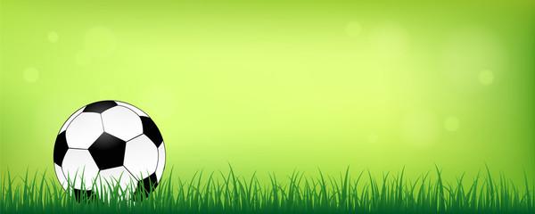 fußball auf grüner wiese grüner hintergrund