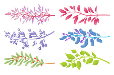Branches with Colorful Leaves and Small Berries