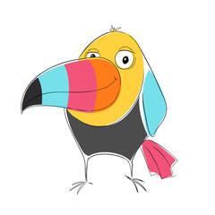 Toucan bird print