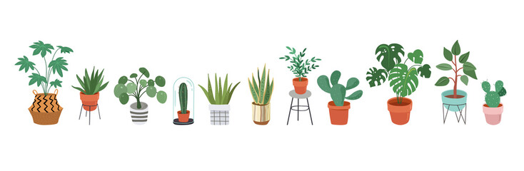 Urban jungle, trendy home decor with plants, planters, cacti, tropical leaves