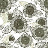 Sunflower vintage seamless pattern. Sunflower retro background. Vector hand drawn illustration.