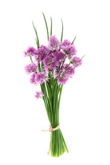 Bundle chives flowers isolated white background