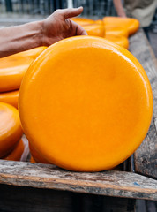 Gouda cheese rolls on sale