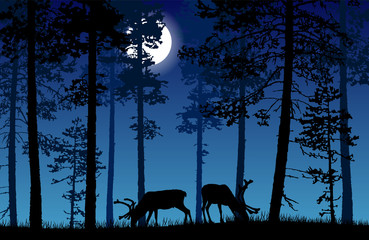 Vector landscape of two deer in a forest at night with dark blue misty background and glowing moon.