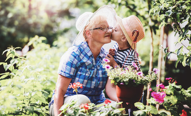 Gardening with kids. Senior woman and her grandchild working in the garden with a plants. Hobbies and leisure, lifestyle, family life