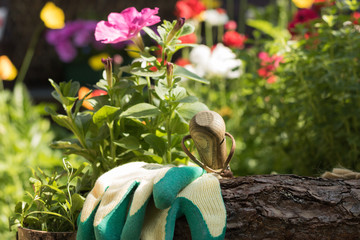 Close-up: garden tools and gloves are in a beautiful flowering garden on a sunny day. Concept: gardening.