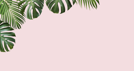 Wall Mural - Tropical leaves monstera and yellow palm on pink background with copy space