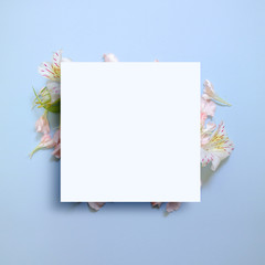 Frames with beautiful flowers