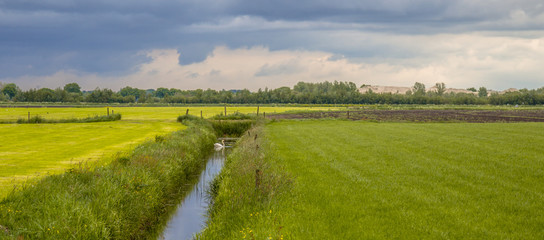 Acrylic Prints Village Panorama of dutch agricultural landscape